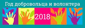 2018 год волонтера в РФ